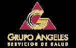 Grupo NASSA logo_gpo_angeles